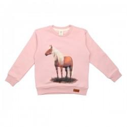 Walkiddy - Bio Kinder Sweatshirt mit Pferde-Druck