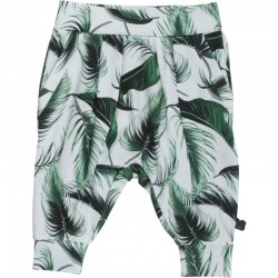 Fred`s World by Green Cotton - Bio Baby Sweathose mit Palmen-Motiv