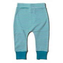 Little Green Radicals - Bio Baby Jersey Hose mit Streifen, türkis