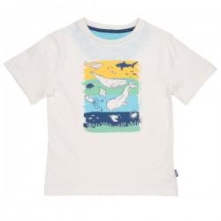 kite kids - Bio Kinder T-Shirt mit Wal-Druck