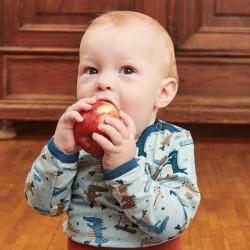 Cheeky Apple - Bio Baby Body langarm mit Krokodil-Allover