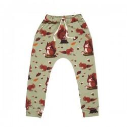 Walkiddy - Bio Kinder Jersey Hose mit Eichhörnchen-Allover