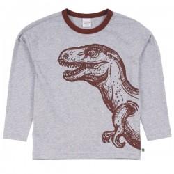 Fred`s World by Green Cotton - Bio Kinder Langarmshirt mit Dinosaurier-Druck